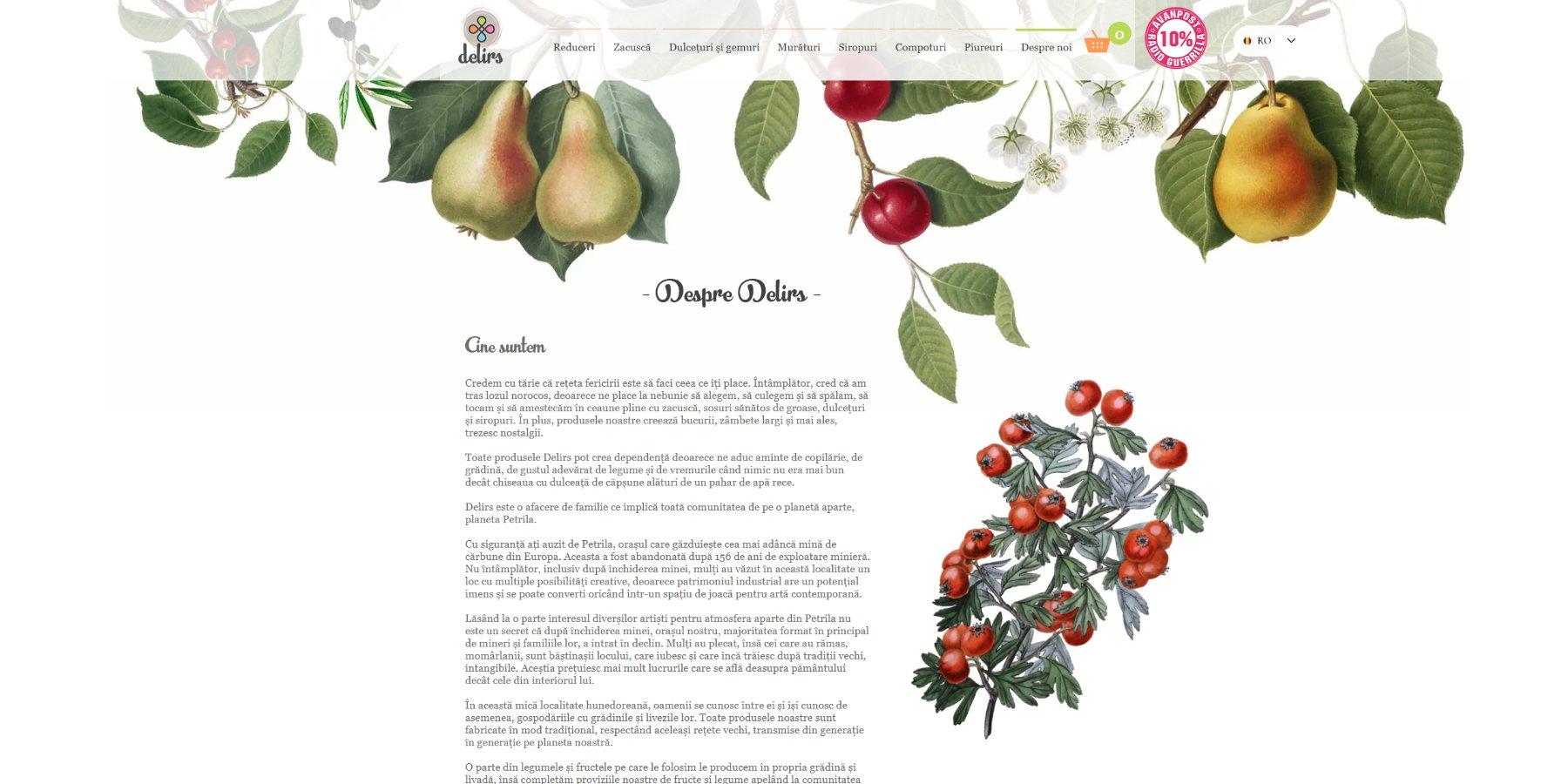 Delirs - creare magazin online